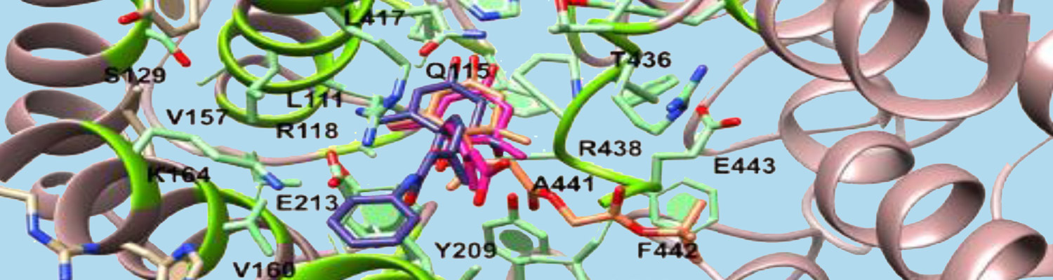 Structural and Cellular Biochemistry